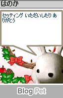 honokahaiku041212.png